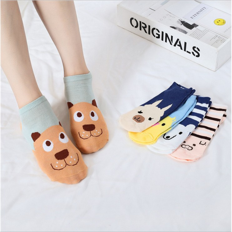 Women's Cute Low Ankle Socks, Assorted Colors